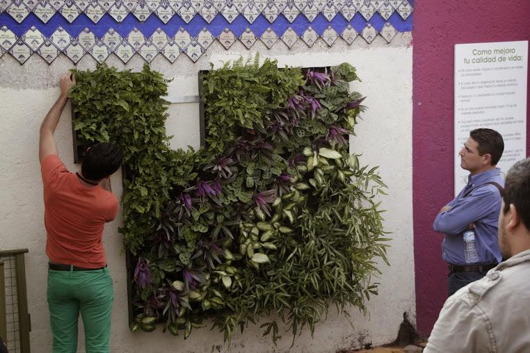 Explicando jardines verticales