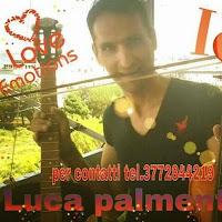 @ludovicopalmentieri1