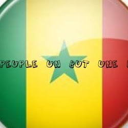 Mamadou Gning Photo 8