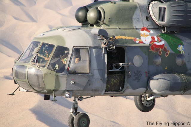 04_Mi-171_Flying_Hippos_06.jpg