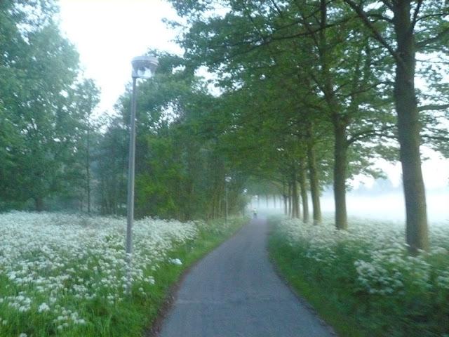 24h/100EM/100km/50EM/50km; Schiedam(NL): 26-27/05/2012 P1170033