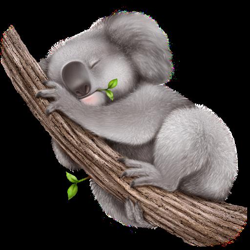 Картинки по запросу коала png