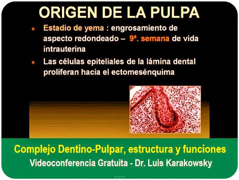 complejo-dentino-pulpar