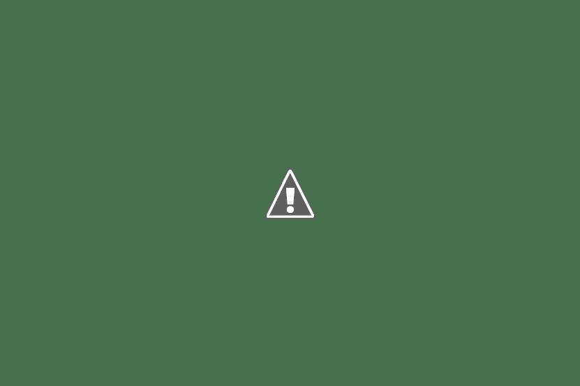 Miharu _New York Style Salmon Hotate Roll