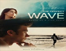 فيلم The Perfect Wave