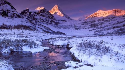 Pure Snow and Alpine Glow, Mount Assiniboine, British Columbia.jpg