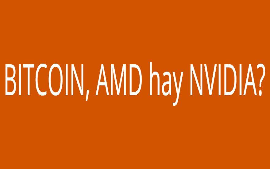 BITCOIN, AMD hay NVIDIA?