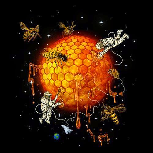 History Of Honey Moon