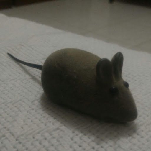 Isac Barbosa