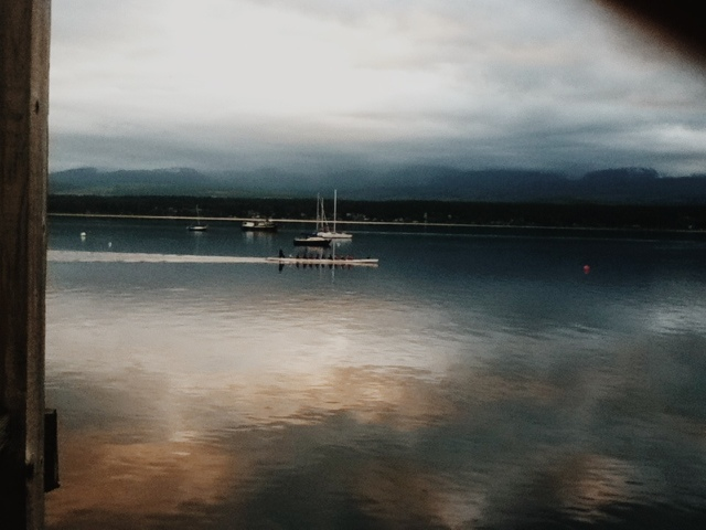 Dragonboat paddles in calm water at Comox Marina