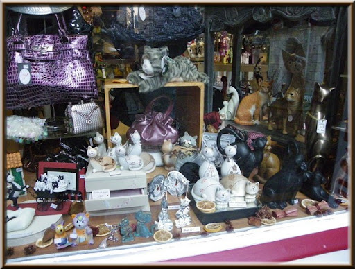 vitrine chats St Malo