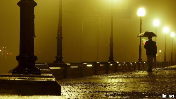 ảnh tâm trạng buồn khi lang thang dưới đêm mưa