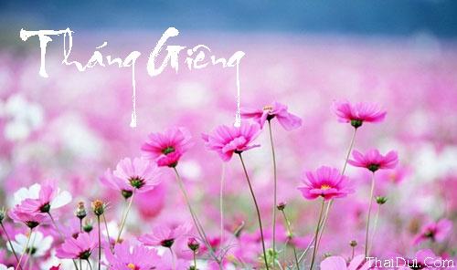 Những bài thơ tình Tháng Giêng hay, buồn, lãng mạn nhất