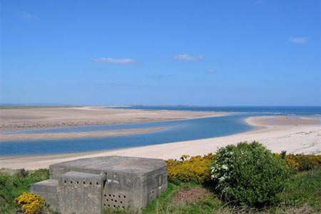 Budle Bay, Budle Guide, Northumberland
