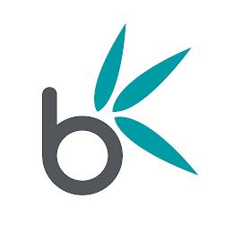 Bamboo Nine Media Ltd logo