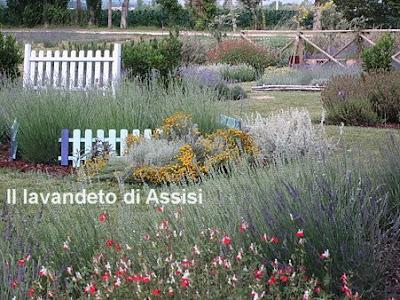 Progetti giardini online gratis progetti giardini privati for Aiuole giardino immagini