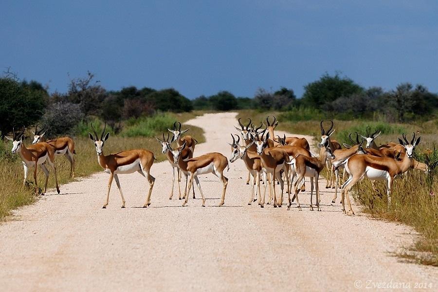 Namibia+2014_101.JPG