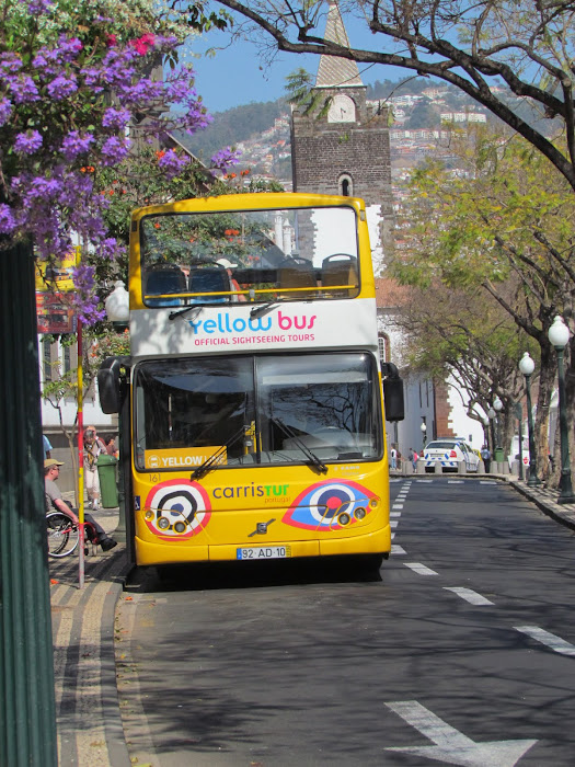 the bus and the cathedral