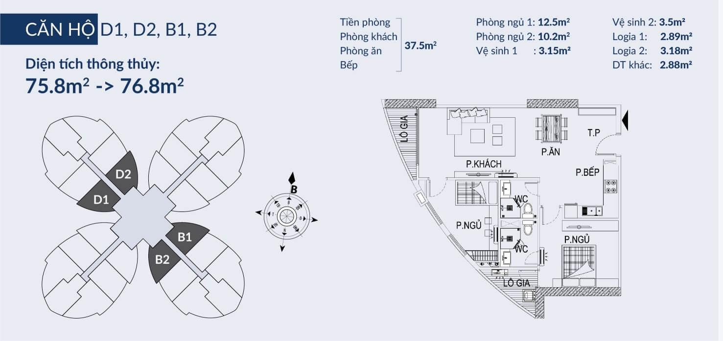 Chi tiết căn hộ D1 D2 và B1 B2 dự án Sky View Plaza
