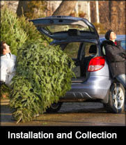 Christmas tree installation and collection service