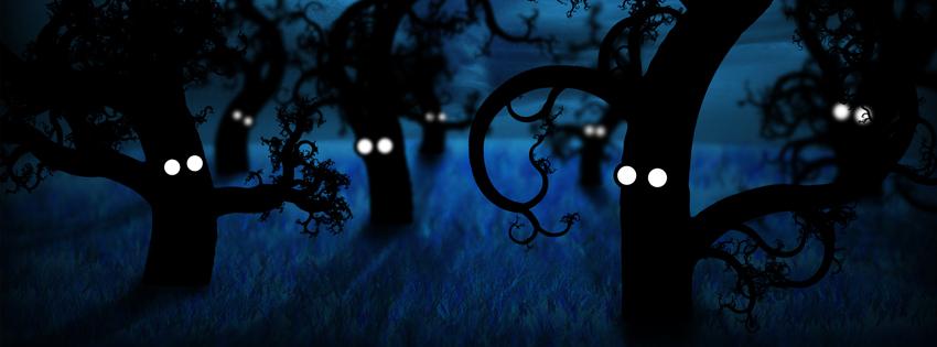 Ảnh bìa những gốc cây trong đêm tối