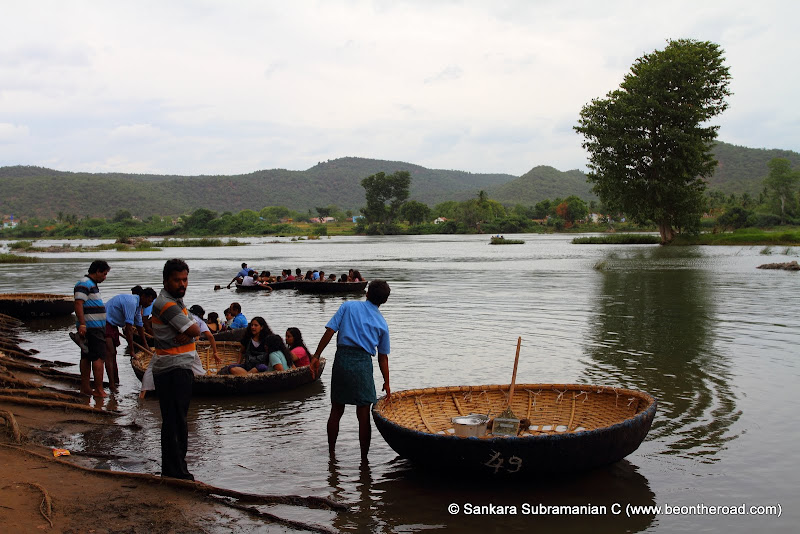 Coracles are the only way to cross the swirling Cauvery river