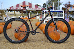 twohubs.com Halloween Shimano Alfine 11 Belt Drive Fat Bike