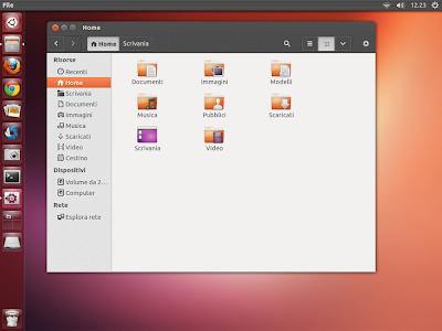 AmbianceP su Ubuntu 13.04 Raring