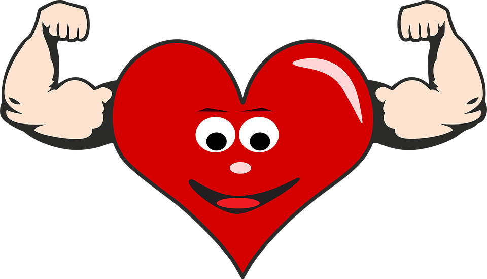 Heart, Health - Free images on Pixabay