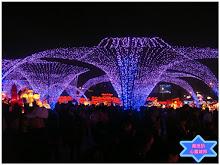 新竹燈會競賽燈區美景一
