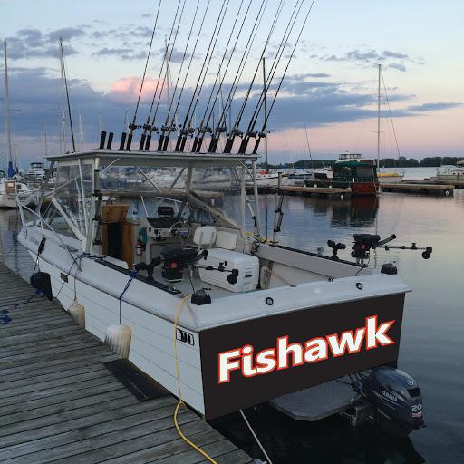 fishawk2