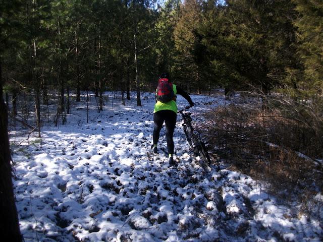 Horse Damage on the Berryman Trail