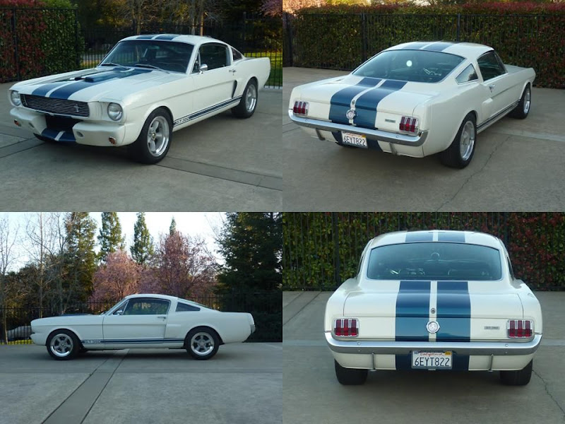 2015 Ford Edge For Sale >> stencil for painting 66 GT350 side stripes - MustangForums.com