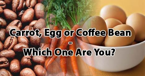 Carrot_Egg_or_Coffee_Bean___Which_O_.jpg
