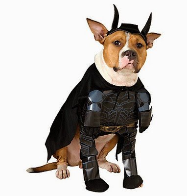Batman The Dark Knight Halloween Dog Costume