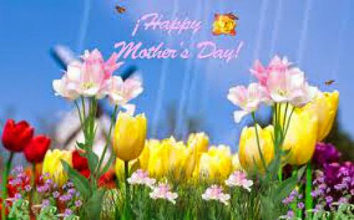 Celebrate Mother Day To Connect Leadership Nature And Mother Nature The True Leaders Are