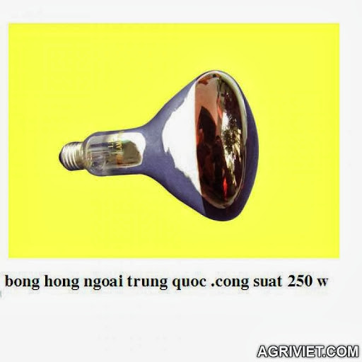 Agriviet.Com-Copy_of_hinh_bong_hong_ngoai_250_w.JPG