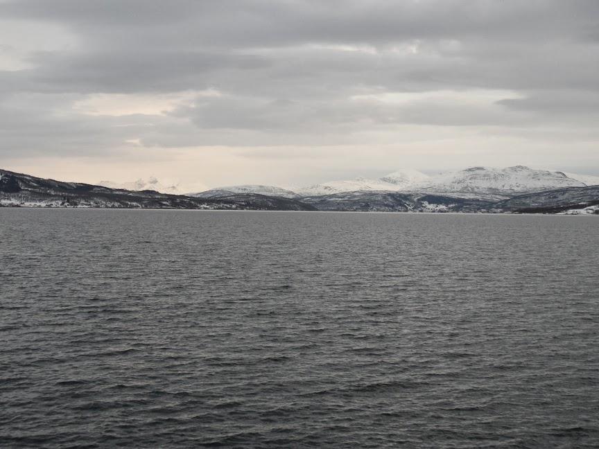 Norvège mars 2014 SAM_1459