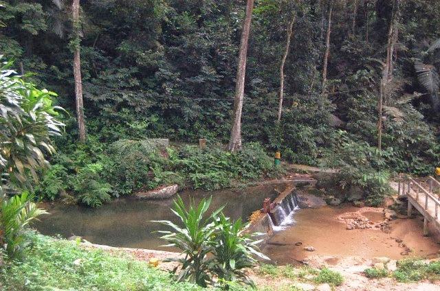 Hutan-Lipur-Gunung-Datuk-Recreational-Forest