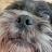 GoldCraft avatar image