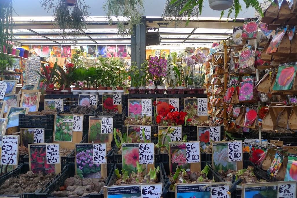 amsterdam marché aux fleurs