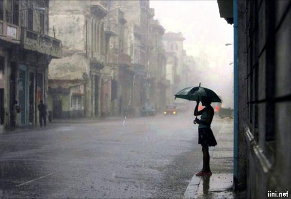 ảnh cô gái đứng đợi dưới mưa