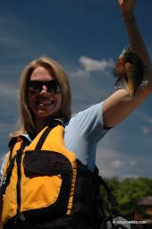 Reston sunfish