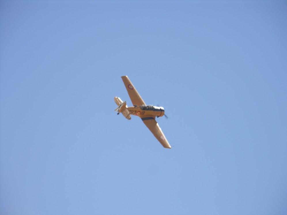 """Exhibición aerea de la Fundación """"Infante de Orleans"""". PICT0449"""