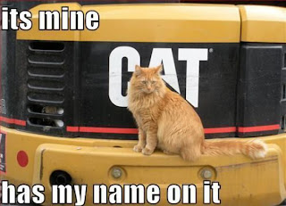 lolcats its mine has my name on it, lolcats, cats, funny cats, funny animals, kittens, kitty, funny kitty, funny kittens