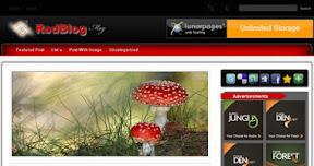 RedBlogMagazine