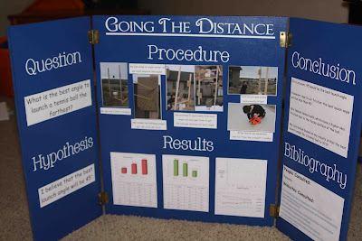 catapult science fair project