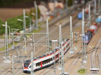 Modell des Seehas der SBB - die gleichen Züge verkehren auf der Wiesentalbahn.