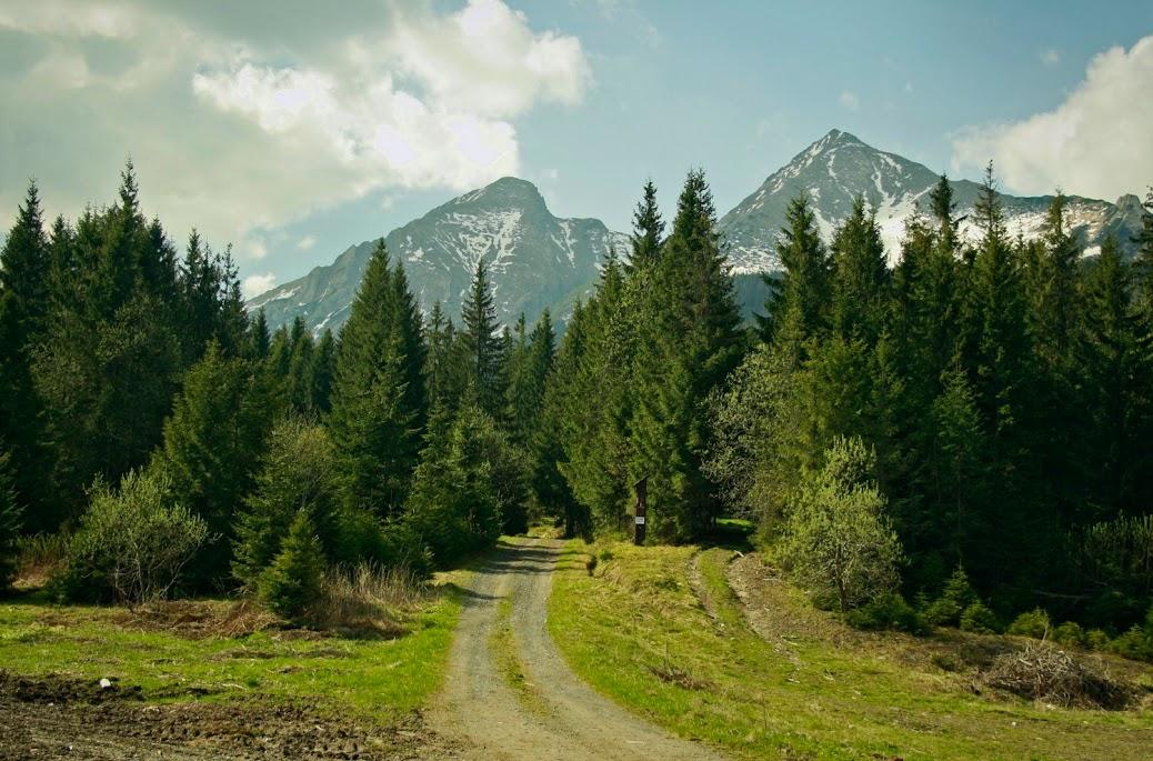 Zdziarska Przełęcz