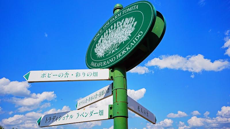 ファーム富田  写真4